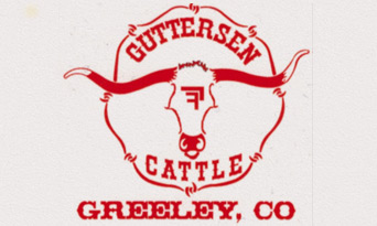 Guttersen Cattle
